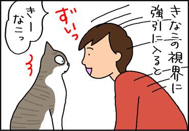 猫と目を合わす4コマ猫漫画