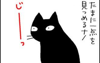 霊感がありそうな猫の4コマ猫まんが