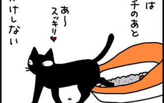猫のすべてが愛おしい4コマ猫漫画