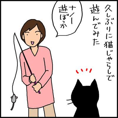 猫じゃらしで遊ばない猫の4コマ猫漫画