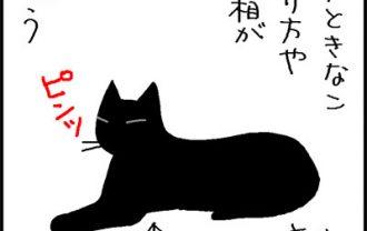 うつるしぐさの4コマ猫漫画