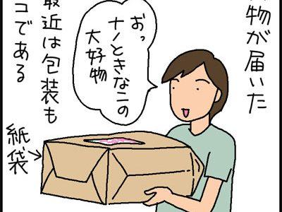 紙袋に入る猫の4コマ猫漫画