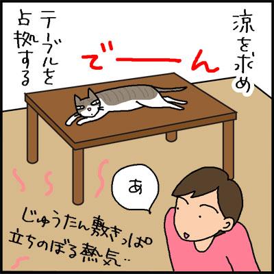 場所へのこだわりがあるネコの4コマ猫漫画