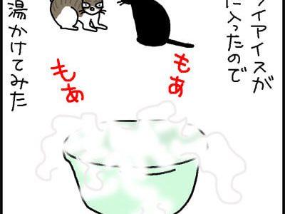 ドライアイスに反応する猫の4コマ猫漫画