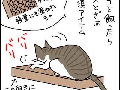 猫の爪とぎの4コマ猫漫画