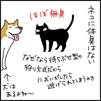 猫のにおいの4コマ猫漫画