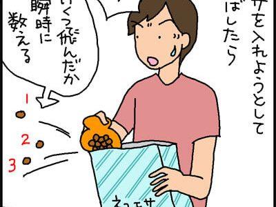 こぼしたエサを貪欲に拾う猫の4コマ猫漫画