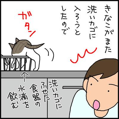 洗いかごに入る猫の4コマ猫漫画