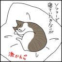 猫のぬくもりを感じる飼い主の4コマ猫漫画