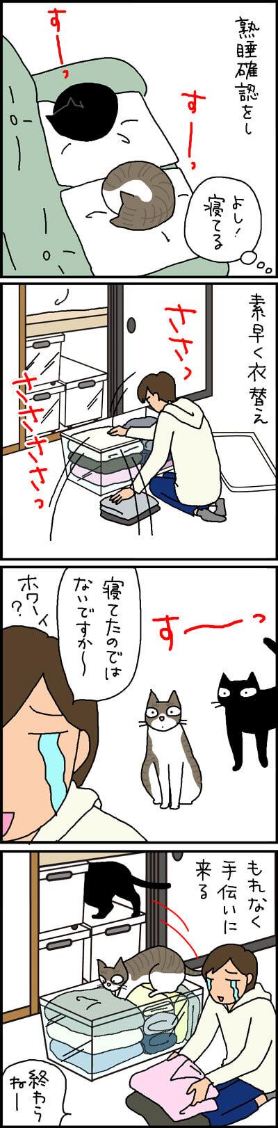 猫のいる家庭の衣替えの4コマ猫漫画