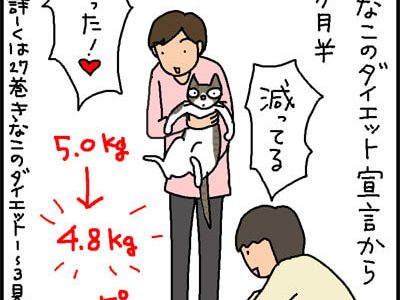猫のダイエットの4コマ猫漫画