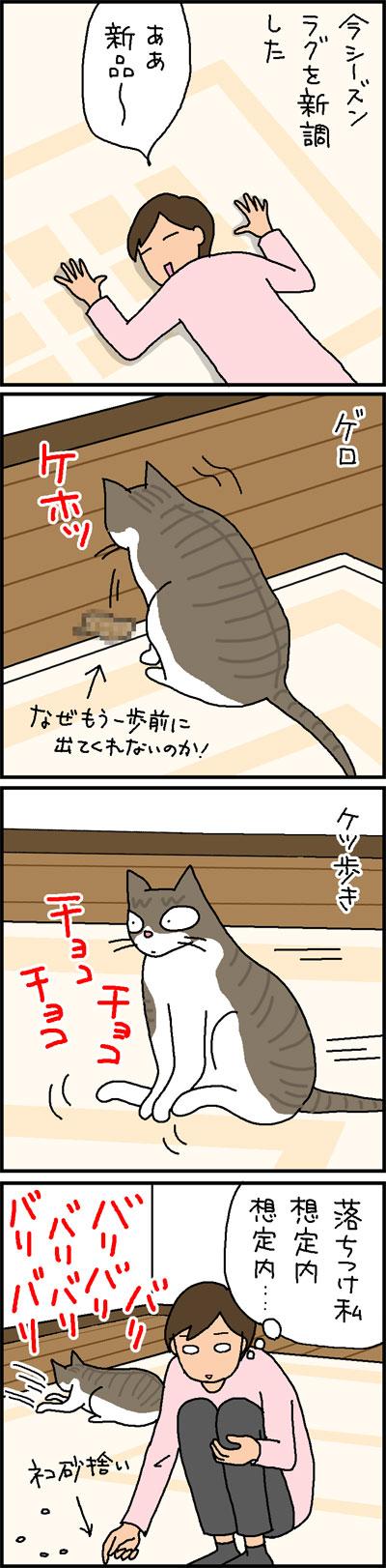 新しいラグに好き放題する猫の4コマ猫漫画