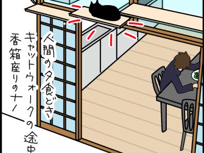 居眠りしてて落ちたネコの4コマ猫漫画