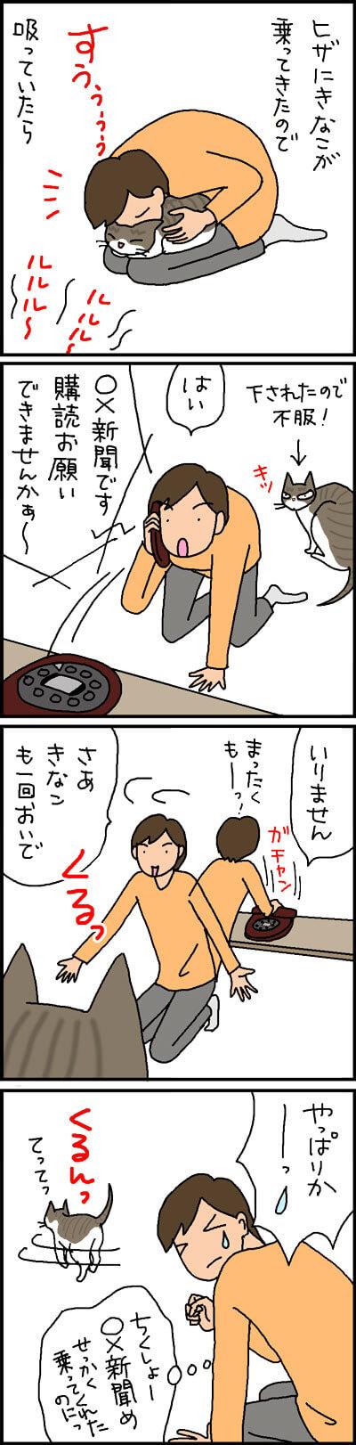膝に乗る猫の4コマ猫漫画