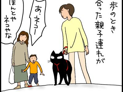 黒猫怖い 小学生のころ 「黒ネコ前を横切ったら悪いことがある」 なんて迷信があった気がする あのお母さんはどんな意味で「怖い」と 言ったのかは不明だけど 直射日光を浴びた猫の目は 確かに怖い(笑) そしてそんな顔も愛おしく見える 猫の不思議