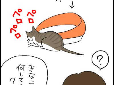 ウンチをなめた猫の口に躊躇する飼い主の4コマ猫漫画