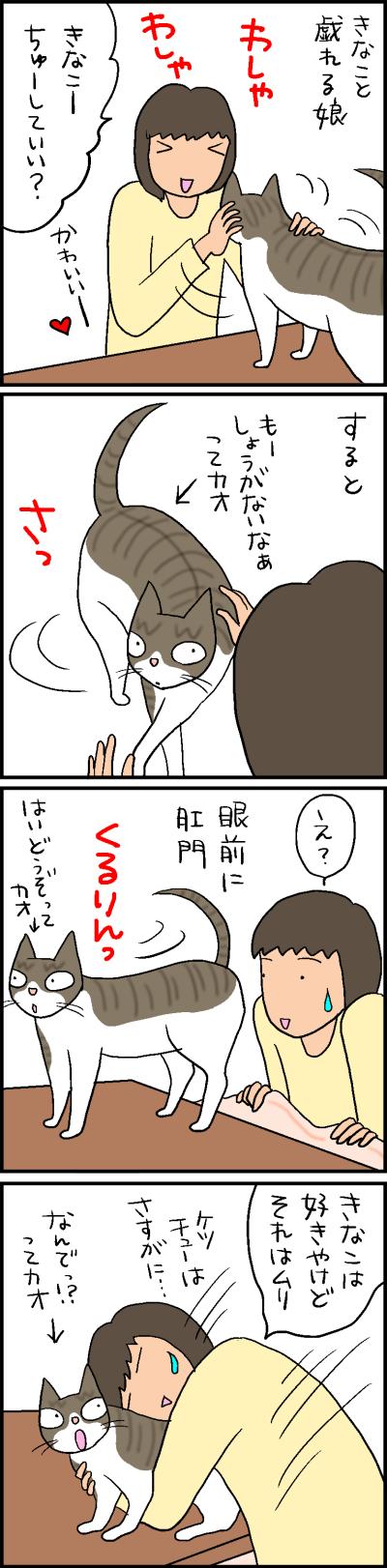 猫 おしり 向ける