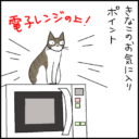 電子レンジの上が好きな猫の4コマ猫漫画