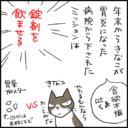 猫に錠剤の薬を飲ます4コマ猫漫画
