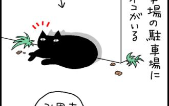 結局うちの猫が一番かわいいという4コマ猫漫画