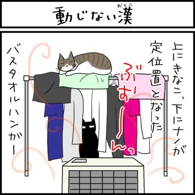 何があっても動じない猫の4コマ猫漫画