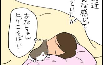 猫と一緒に寝るか熟睡をとるかの4コマ猫漫画