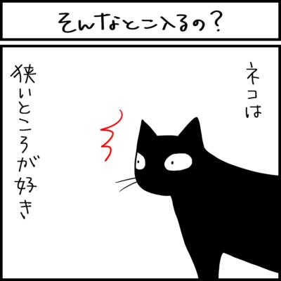 狭いところが好きな猫の4コマ猫漫画