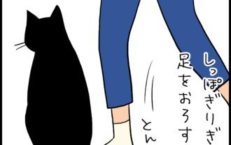 しっぽ踏まれた猫の4コマ猫漫画