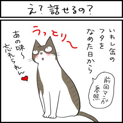 台所に攻めてくる猫の4コマ猫漫画