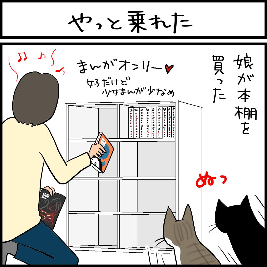 本棚に乗る猫の4コマ猫漫画