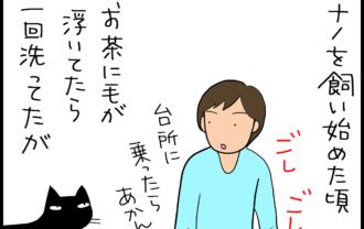 猫の毛がコップに入る4コマ猫漫画