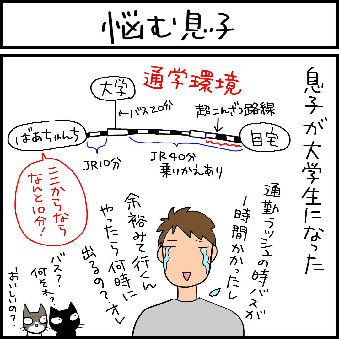 決定の理由は猫の4コマ猫漫画