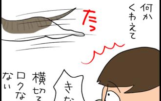蝶々結びをほどく猫の4コマ猫漫画