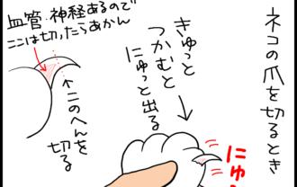 ネコの爪切りの4コマ猫漫画