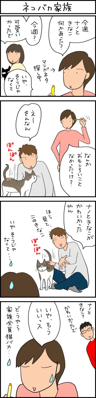 猫バカな家族の4コマ猫漫画