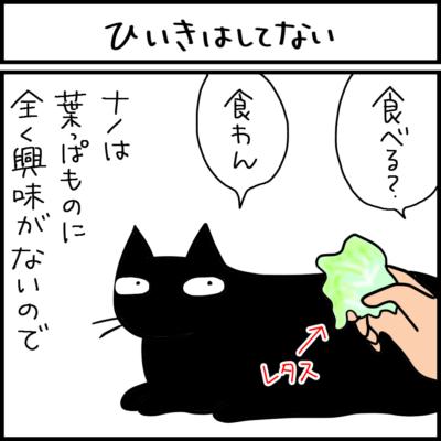ひいきしていると誤解した猫の4コマ猫漫画