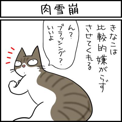 肉が雪崩のように広がる猫の4コマ猫漫画