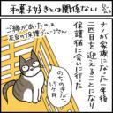 猫の名づけエピソードの4コマ猫漫画
