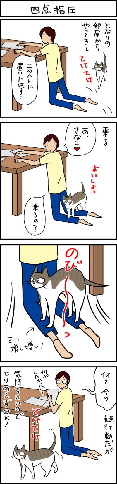 謎行動の猫の4コマ猫漫画