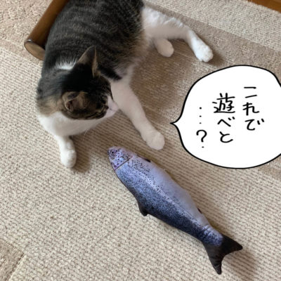 鮭柄の蹴りぐるみ