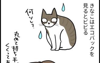好きか嫌いか分からん猫の4コマ漫画