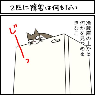 ロミオとジュリエットごっこの4コマ猫漫画