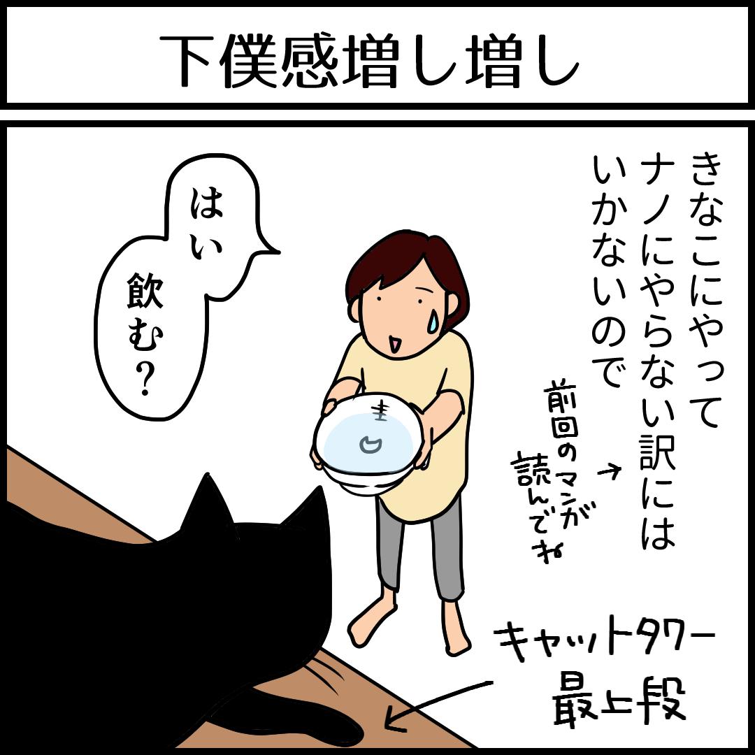 下僕感が増す猫の水飲みの4コマ猫漫画