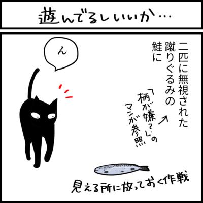 鮭の蹴りぐるみで遊ぶ黒猫の4コマ猫漫画