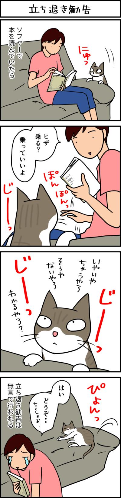 立ち退き勧告する猫の4コマ猫漫画