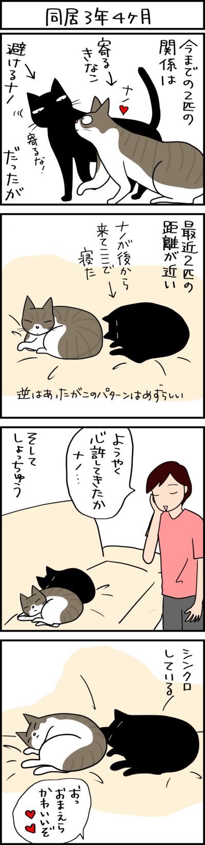シンクロする猫の4コマ猫まんが