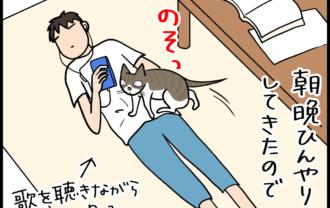 床に嫉妬する息子の4コマ猫まんが