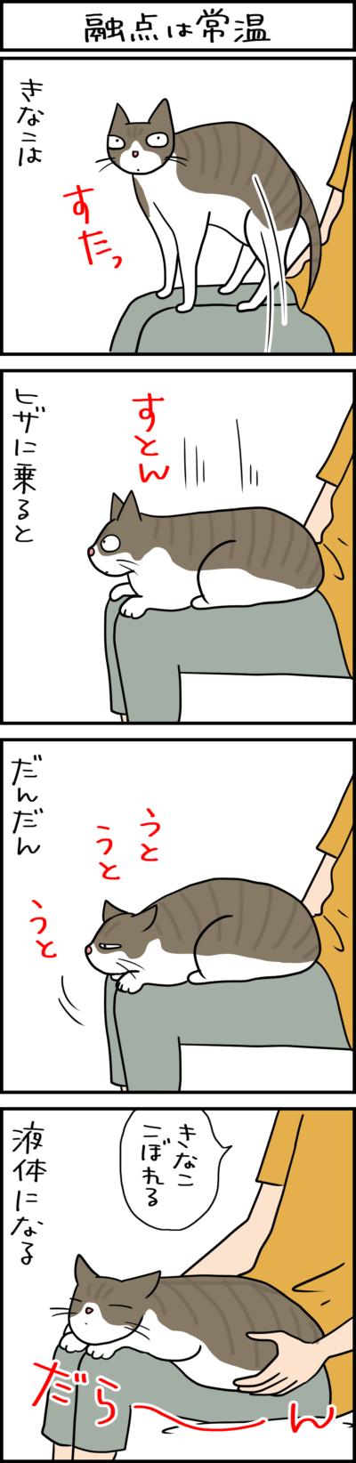 猫は液体である4コマ猫まんが