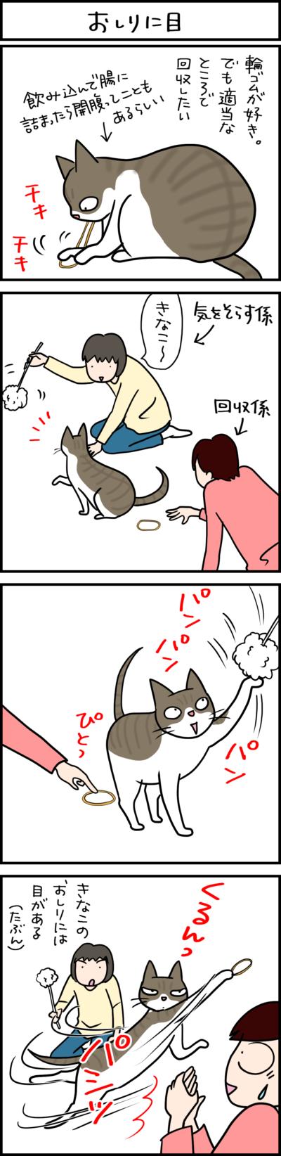 目が後ろにあるんじゃないかと思うネコの行動の4コマ猫まんが