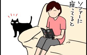 家族間で猫を取り合う4コマ猫まんが